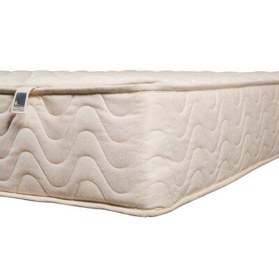 "Abscond 10"" Latex Medium Foam Mattress"
