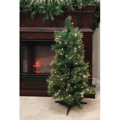 3' Pre-Lit Slim Tattinger Long Needle Pine Artificial Christmas Tree by NorthlightSeasonal