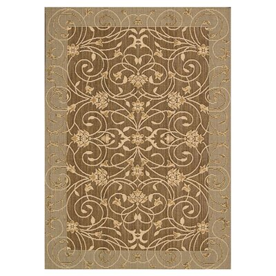 Eclipse Brown Outdoor Area Rug by Nourison