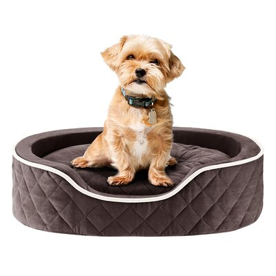 Renny Quilted Memory Foam Orthopedic Oval Cuddler Bloster Dog Bed by Sleep Philosophy
