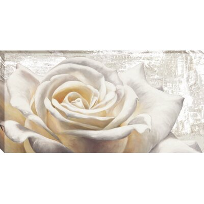 White on White by Jenny Thomlinson Graphic Art on Wrapped Canvas by MidwestArtFrame