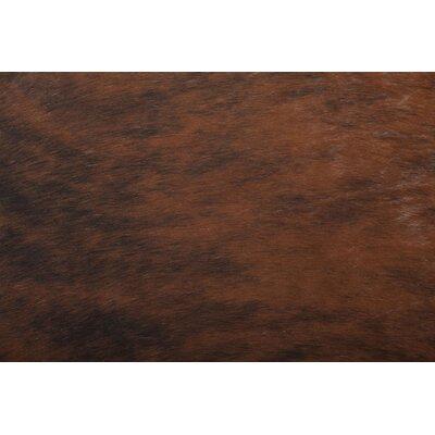 Dark Brindle Area Rug by Saddlemans