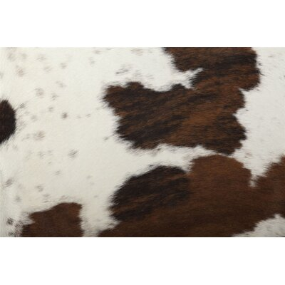 Exotic Special Area Rug by Saddlemans