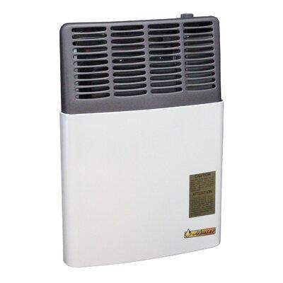 8,000 BTU LP Gas Direct Vent Heater by Ashley