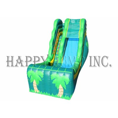 Tropical Wet and Dry Slide Product Photo