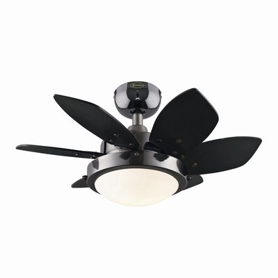 "24"" Quince 6 Blade Ceiling Fan Product Photo"