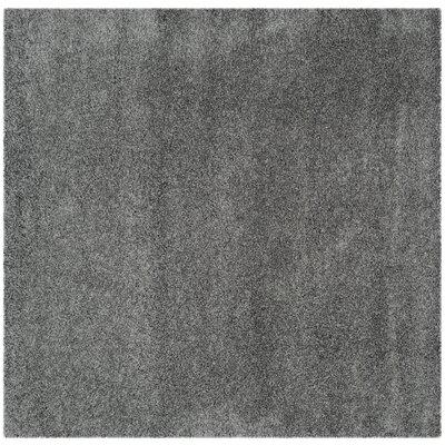 Hudson Shag Dark Grey Area Rug by Safavieh