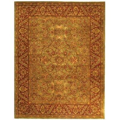 Golden Jaipur Green/Rust Area Rug by Safavieh