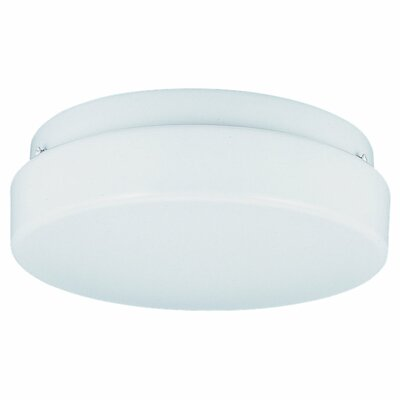 2 Light Fluorescent Wall Fixture / Flush Mount by Sea Gull Lighting