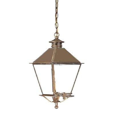 Troy Lighting Montgomery 1 Light Outdoor Hanging Lantern