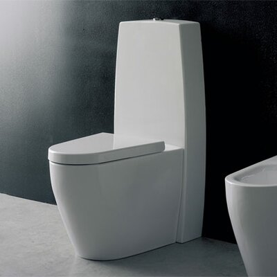 Tizi Elongated 2 Piece Toilet Product Photo