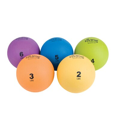 Eco Wise Fitness Weight Ball