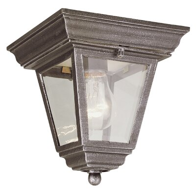 Outdoor 1 Light Flush Mount Product Photo