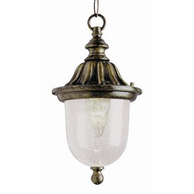 TransGlobe Lighting 1 Light Outdoor Hanging Lantern
