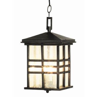 TransGlobe Lighting 2 Light Outdoor Hanging Lantern