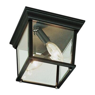 Outdoor 2 Light Flush Mount Product Photo