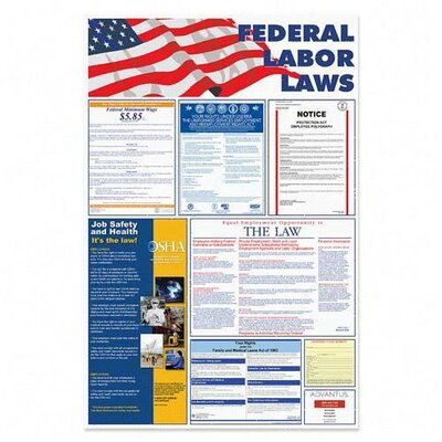"""Advantus Corp. Federal Labor Law Poster, 24""""x36"""", Red/Blue/Black"""