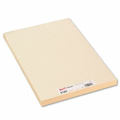 Pacon Corporation Medium Weight Tagboard, 18 X 12, 100/Pack