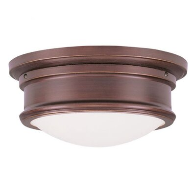 Ceiling Fixtures Flush Mount Product Photo