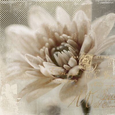 Yosemite Home Decor Revealed Artwork Blooming Softly II Graphic Art on Wrapped Canvas