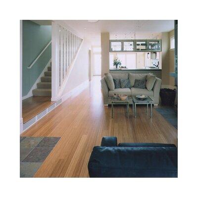 "Teragren Signature Naturals 3-5/8"" Bamboo Hardwood Flooring in Caramelized Vert"