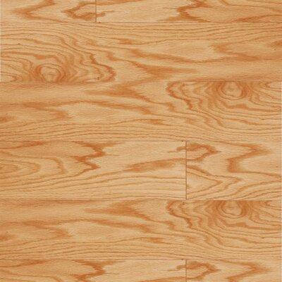 """LM Flooring Lakeside 5"""" Engineered Red Oak Hardwood Flooring in Natural"""