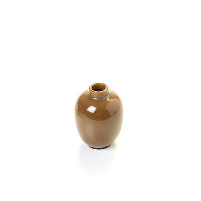 IMAX Mini 6 Piece Mini Vase Set