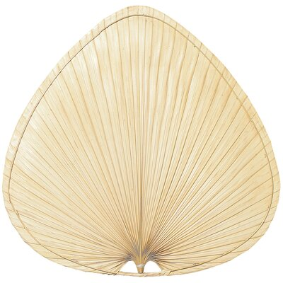 Fanimation Wide Oval-Shaped Palm Leaf Indoor Ceiling Fan Blades