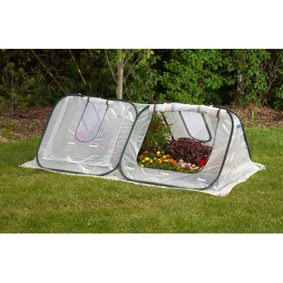 StarterHouse 8 Ft. W x 4 Ft. D Polyethylene Mini Greenhouse by Flowerhouse