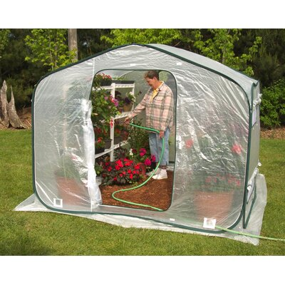 Dreamhouse 8 Ft. W x 8 Ft. D Polyethylene Greenhouse by Flowerhouse