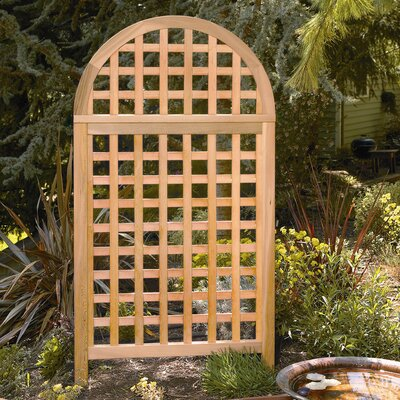 Phat Tommy Andover Arch Screen by Buyers Choice