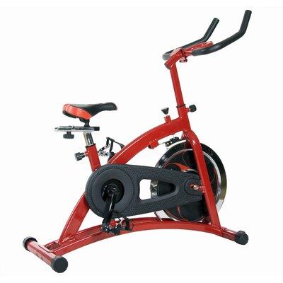 Body Champ Pro Cycle Trainer Bike by Body Flex