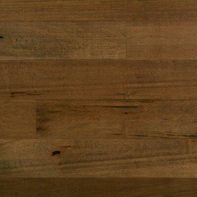 "Columbia Flooring Silverton 5"" Solid Maple Hardwood Flooring in Otter Pond"