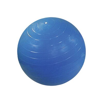 Inflatable Exercise Ball by Cando