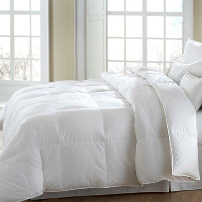 MACKENZA Firm White Down/White Feather Pillow by Downright