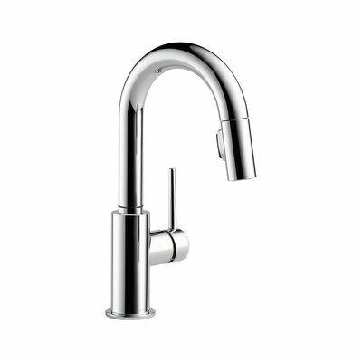 Trinsic Single Handle Deck Mounted Kitchen Faucet Product Photo