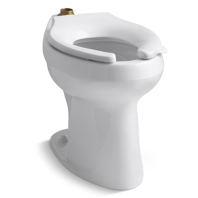 Highline 1.6 or 1.28 GPF Flushometer Valve Comfort Height Ada Elongated Toilet Bowl, Requires Seat Product Photo