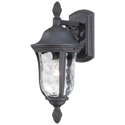 Great Outdoors by Minka Ardmore 1 Light Wall Lantern