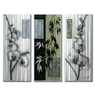 'Asian Orchid' by Tina Chaden 3 Piece Graphic Art Plaque Set by All My Walls ...