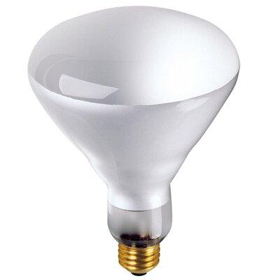 130 volt 2700k incandescent light bulb by bulbrite industries. Black Bedroom Furniture Sets. Home Design Ideas