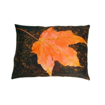 Float Throw Pillow by lava