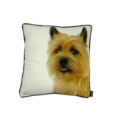 lava Yorkie Throw Pillow