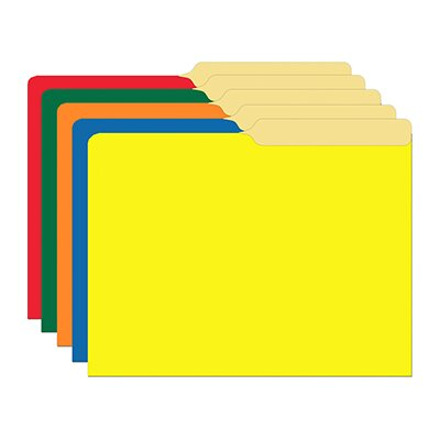 Top Notch Teacher Products Primary Assorted Mini File Folders