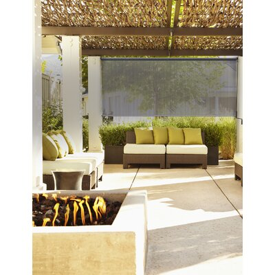 Lewis Hyman Inc Radiance Premium Roll Up Solar Shade Reviews Wayfair
