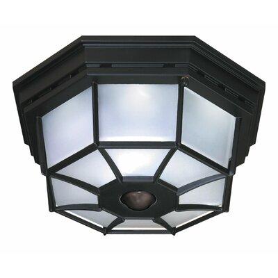 heath zenith 4 light octagonal flush mount with motion. Black Bedroom Furniture Sets. Home Design Ideas