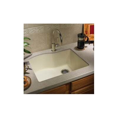swanstone granite kitchen sink swanstone swanstone classics 24 quot x 21 quot single bowl kitchen 5954