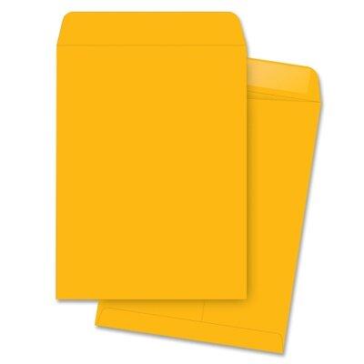 "Business Source Catalog Envelopes, Plain, 10""x15"", 250 per Box, Kraft"