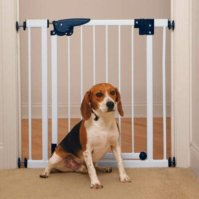 Pressure Mounted Gate by Pet Studio
