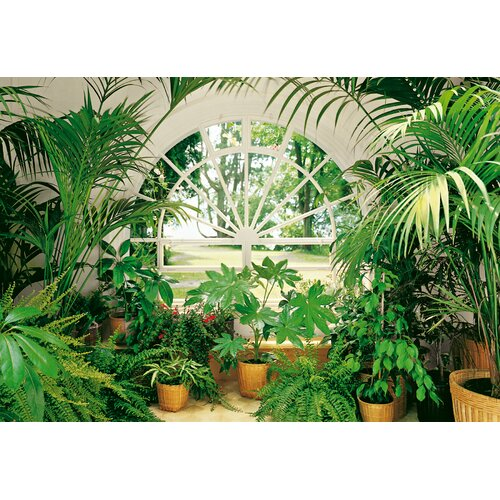 Ideal decor wintergarden large wall mural wayfair for Brewster birch wall mural
