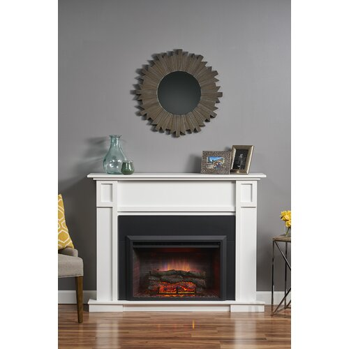 Wayfair Clearance: Gallery Zero Clearance Electric Fireplace Insert